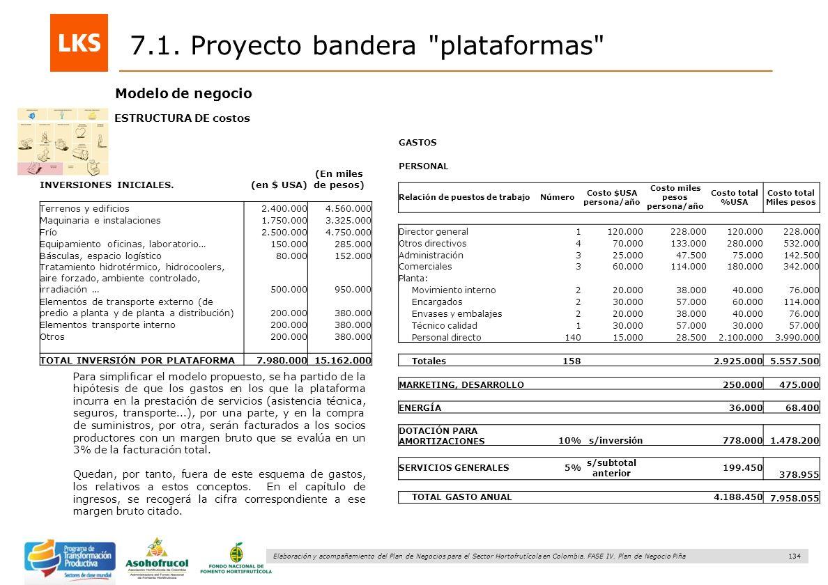 134 Elaboración y acompañamiento del Plan de Negocios para el Sector Hortofrutícola en Colombia. FASE IV. Plan de Negocio Piña 7.1. Proyecto bandera
