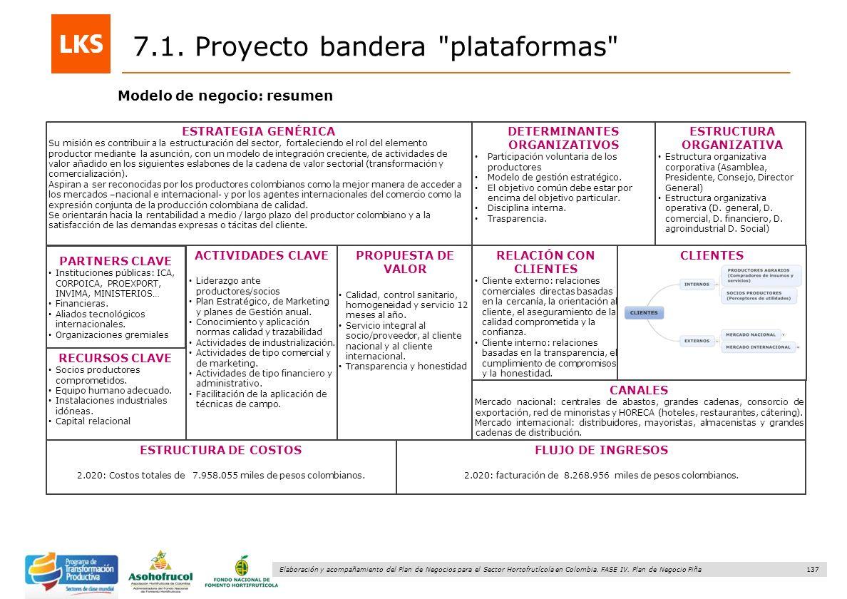 137 Elaboración y acompañamiento del Plan de Negocios para el Sector Hortofrutícola en Colombia. FASE IV. Plan de Negocio Piña Modelo de negocio: resu