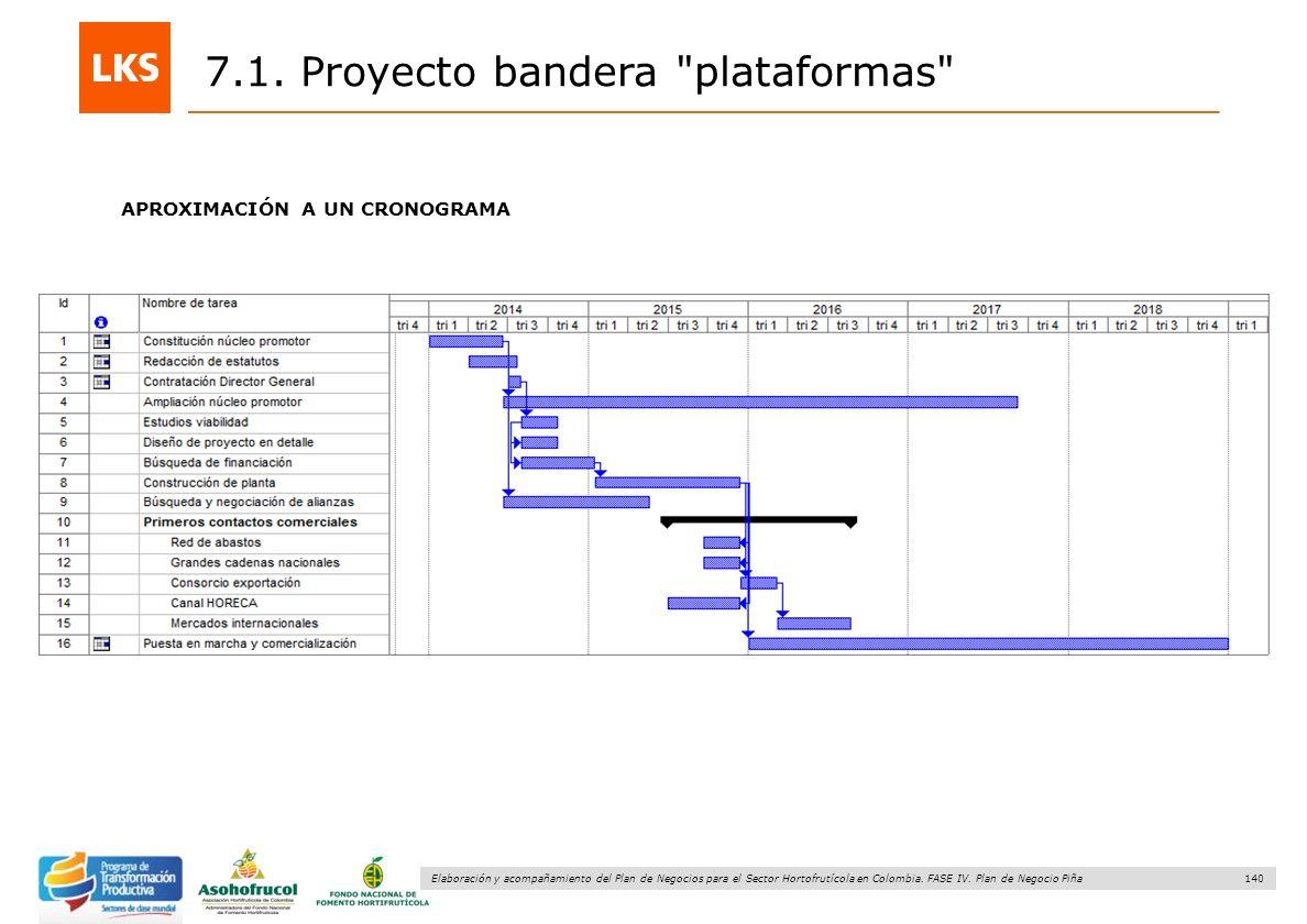 140 Elaboración y acompañamiento del Plan de Negocios para el Sector Hortofrutícola en Colombia. FASE IV. Plan de Negocio Piña APROXIMACIÓN A UN CRONO