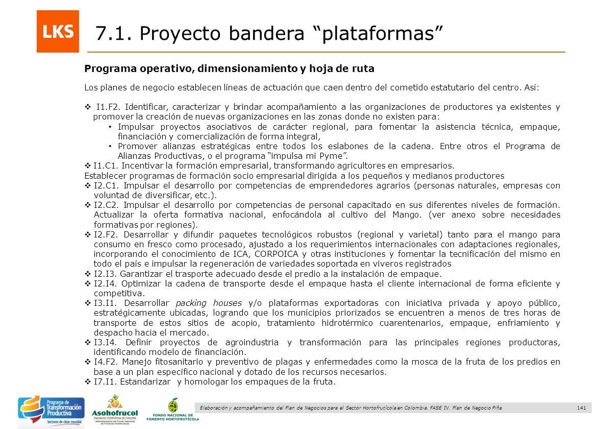 141 Elaboración y acompañamiento del Plan de Negocios para el Sector Hortofrutícola en Colombia. FASE IV. Plan de Negocio Piña Programa operativo, dim