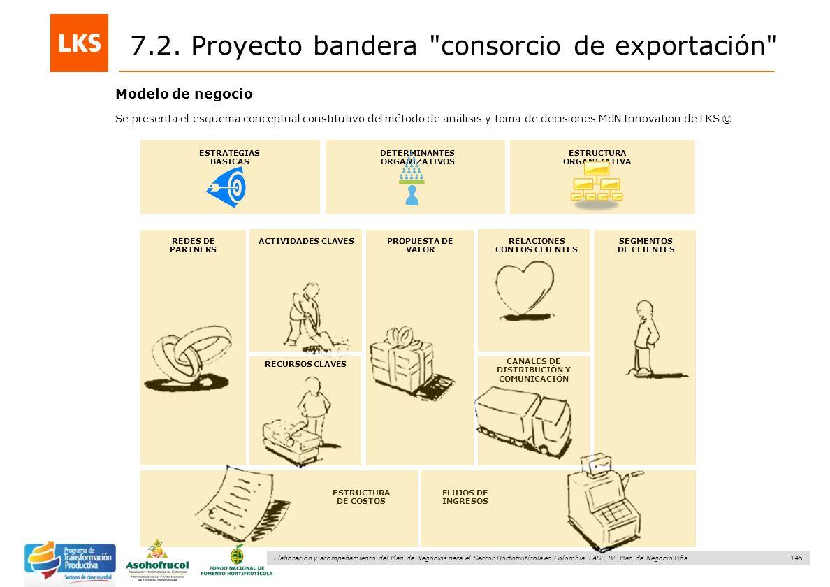 145 Elaboración y acompañamiento del Plan de Negocios para el Sector Hortofrutícola en Colombia. FASE IV. Plan de Negocio Piña Modelo de negocio REDES