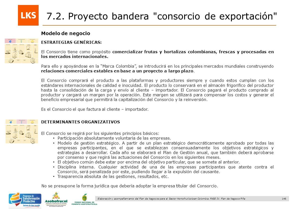146 Elaboración y acompañamiento del Plan de Negocios para el Sector Hortofrutícola en Colombia. FASE IV. Plan de Negocio Piña Modelo de negocio ESTRA
