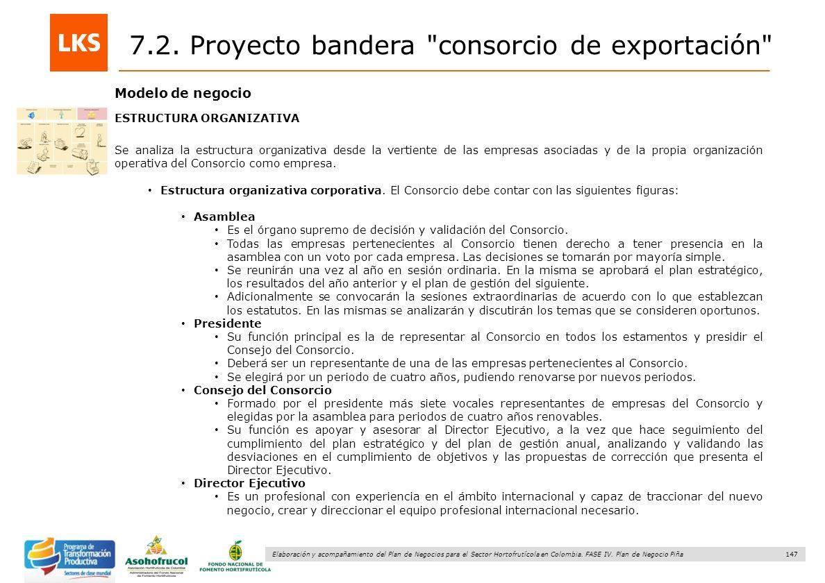 147 Elaboración y acompañamiento del Plan de Negocios para el Sector Hortofrutícola en Colombia. FASE IV. Plan de Negocio Piña Modelo de negocio ESTRU