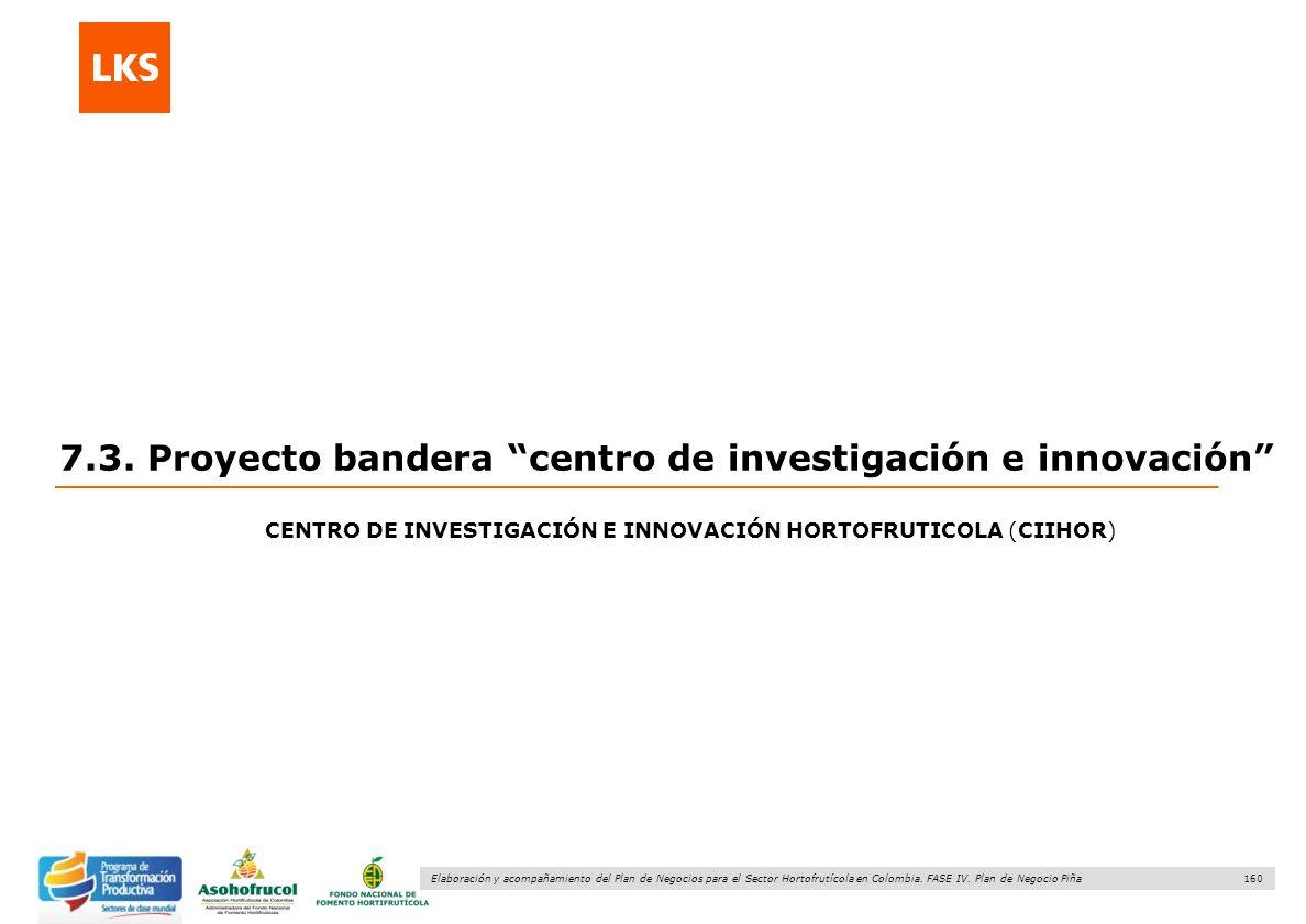 160 Elaboración y acompañamiento del Plan de Negocios para el Sector Hortofrutícola en Colombia. FASE IV. Plan de Negocio Piña 7.3. Proyecto bandera c