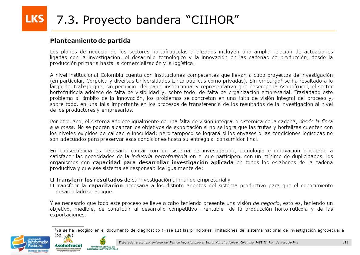 161 Elaboración y acompañamiento del Plan de Negocios para el Sector Hortofrutícola en Colombia. FASE IV. Plan de Negocio Piña 7.3. Proyecto bandera C