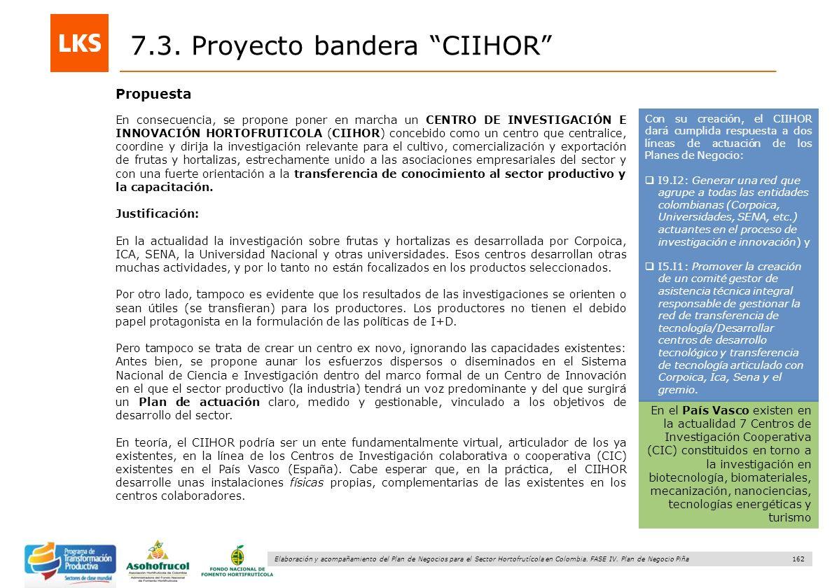 162 Elaboración y acompañamiento del Plan de Negocios para el Sector Hortofrutícola en Colombia. FASE IV. Plan de Negocio Piña Propuesta 7.3. Proyecto