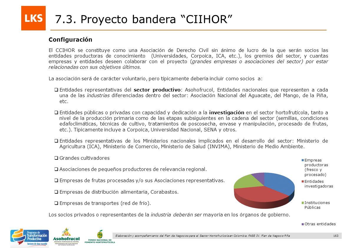 163 Elaboración y acompañamiento del Plan de Negocios para el Sector Hortofrutícola en Colombia. FASE IV. Plan de Negocio Piña Configuración 7.3. Proy