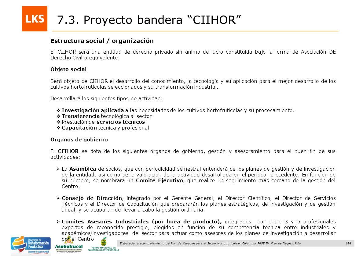 164 Elaboración y acompañamiento del Plan de Negocios para el Sector Hortofrutícola en Colombia. FASE IV. Plan de Negocio Piña Estructura social / org