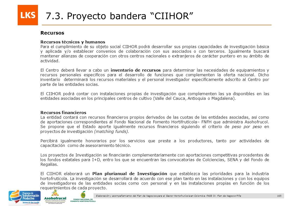 165 Elaboración y acompañamiento del Plan de Negocios para el Sector Hortofrutícola en Colombia. FASE IV. Plan de Negocio Piña Recursos 7.3. Proyecto