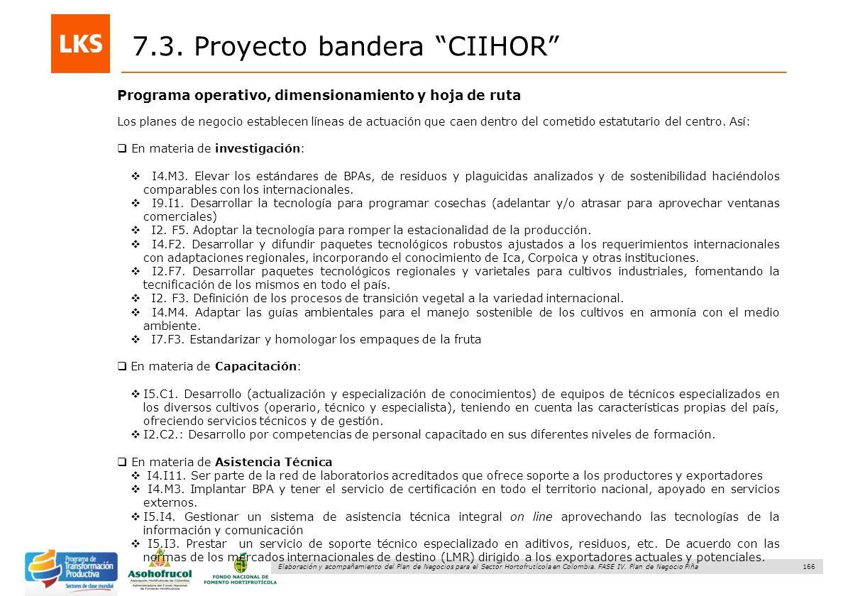 166 Elaboración y acompañamiento del Plan de Negocios para el Sector Hortofrutícola en Colombia. FASE IV. Plan de Negocio Piña Programa operativo, dim