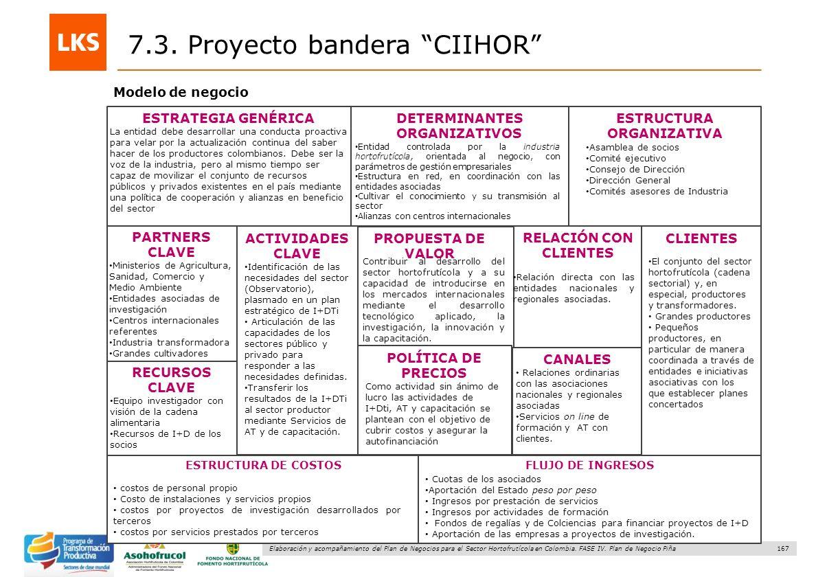 167 Elaboración y acompañamiento del Plan de Negocios para el Sector Hortofrutícola en Colombia. FASE IV. Plan de Negocio Piña Modelo de negocio 7.3.