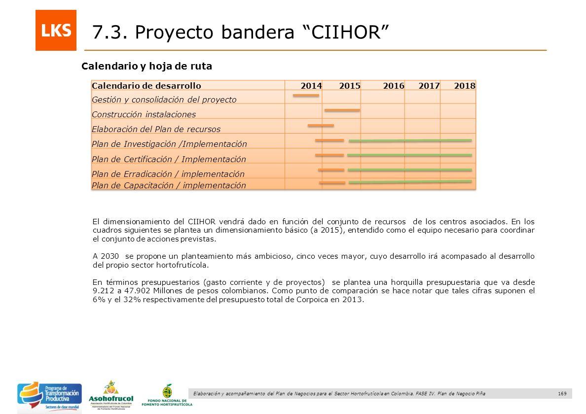 169 Elaboración y acompañamiento del Plan de Negocios para el Sector Hortofrutícola en Colombia. FASE IV. Plan de Negocio Piña 7.3. Proyecto bandera C