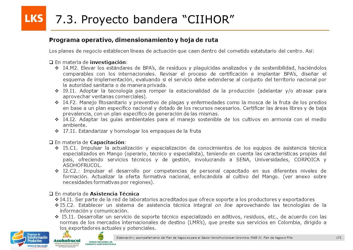 172 Elaboración y acompañamiento del Plan de Negocios para el Sector Hortofrutícola en Colombia. FASE IV. Plan de Negocio Piña Programa operativo, dim