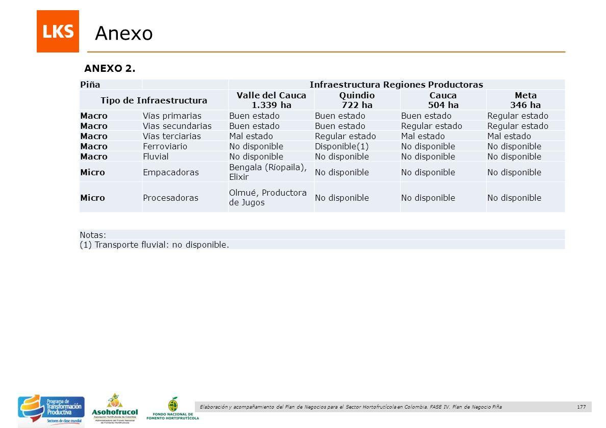 177 Elaboración y acompañamiento del Plan de Negocios para el Sector Hortofrutícola en Colombia. FASE IV. Plan de Negocio Piña ANEXO 2. Anexo Piña Inf