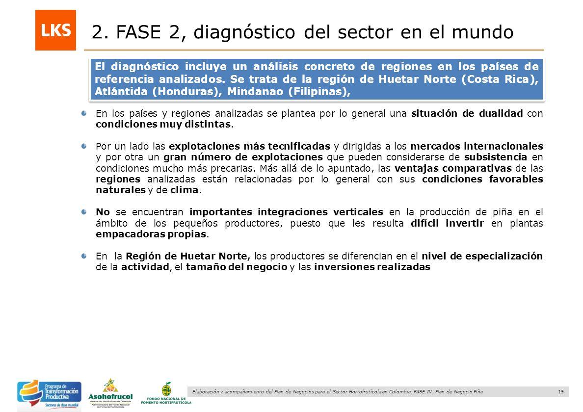 19 Elaboración y acompañamiento del Plan de Negocios para el Sector Hortofrutícola en Colombia. FASE IV. Plan de Negocio Piña 2. FASE 2, diagnóstico d