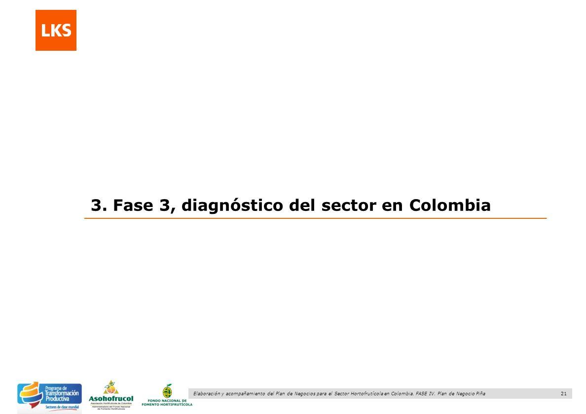 21 Elaboración y acompañamiento del Plan de Negocios para el Sector Hortofrutícola en Colombia. FASE IV. Plan de Negocio Piña 3. Fase 3, diagnóstico d