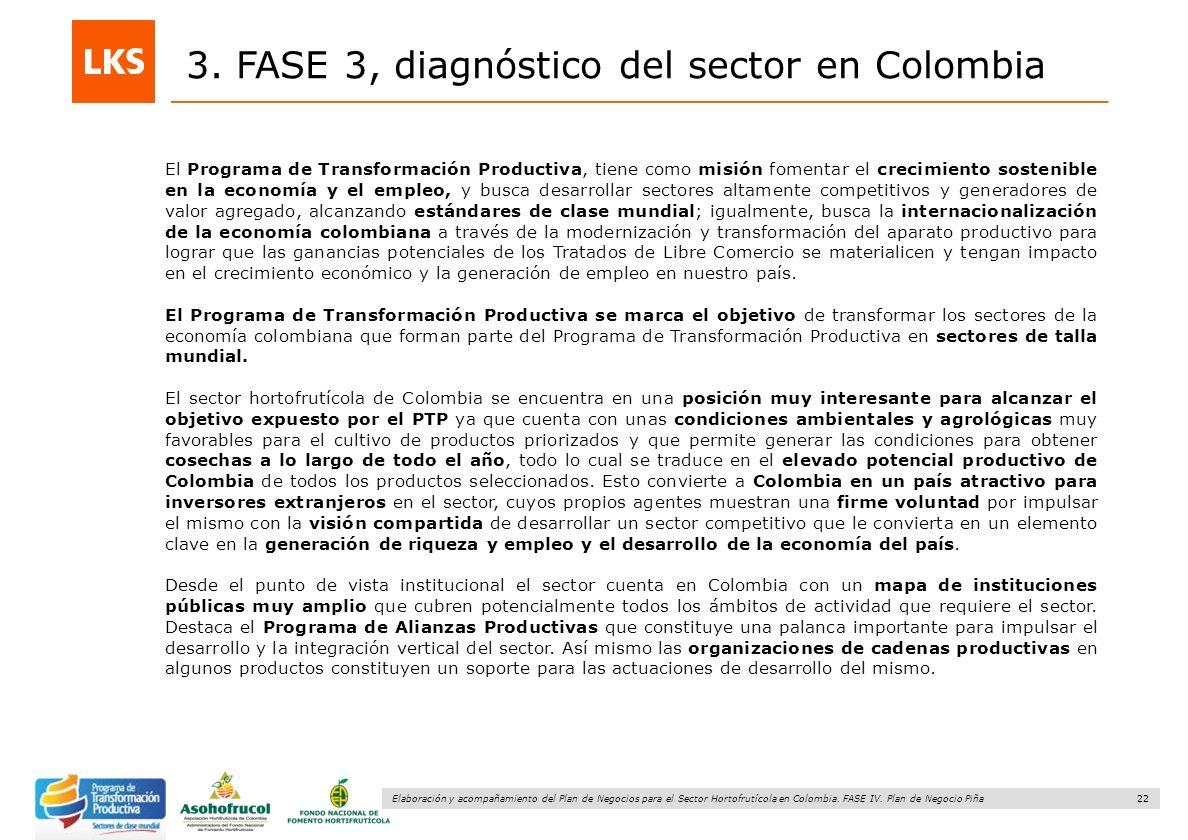 22 Elaboración y acompañamiento del Plan de Negocios para el Sector Hortofrutícola en Colombia. FASE IV. Plan de Negocio Piña 3. FASE 3, diagnóstico d