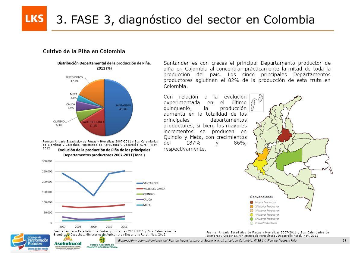 29 Elaboración y acompañamiento del Plan de Negocios para el Sector Hortofrutícola en Colombia. FASE IV. Plan de Negocio Piña 3. FASE 3, diagnóstico d