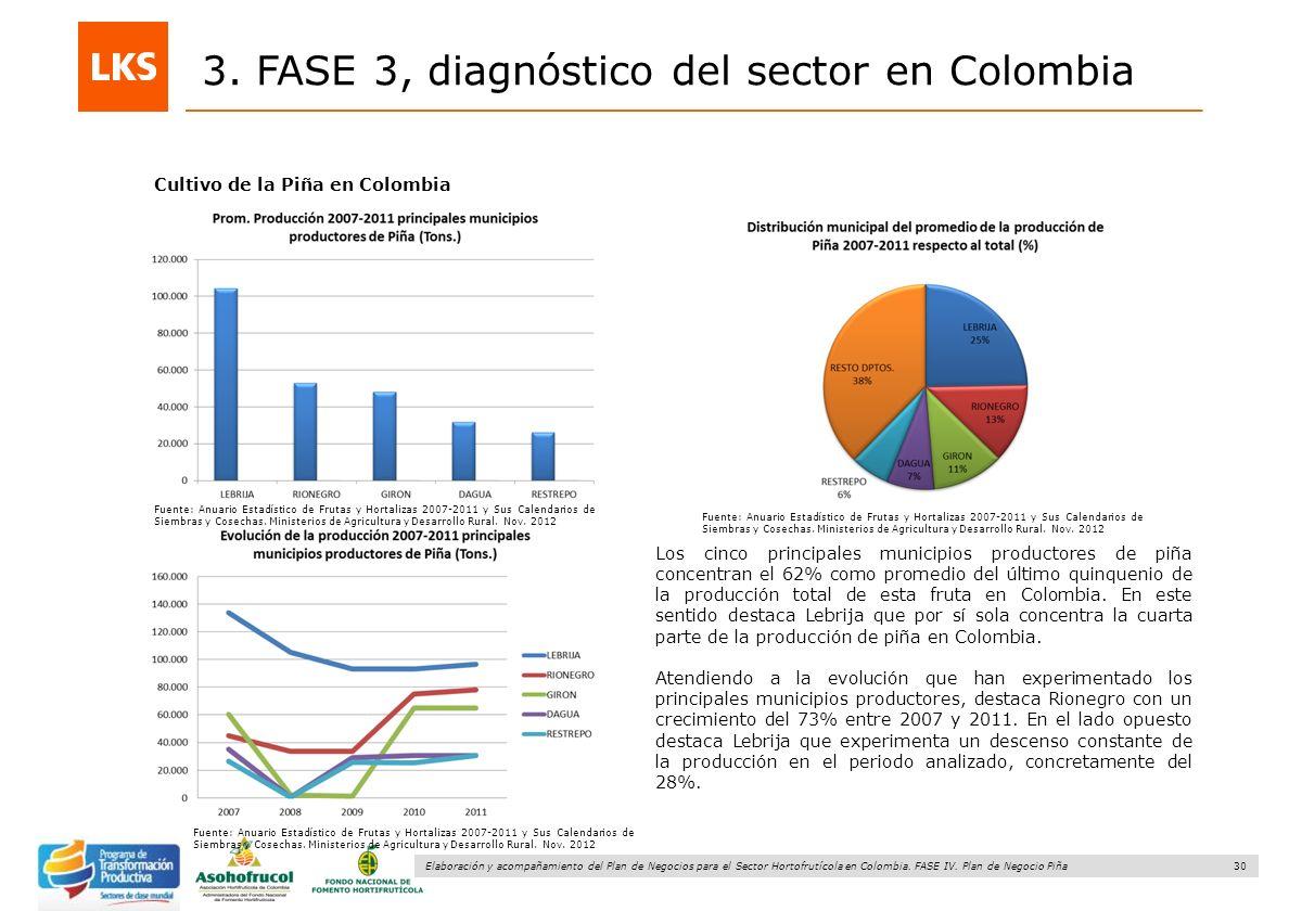 30 Elaboración y acompañamiento del Plan de Negocios para el Sector Hortofrutícola en Colombia. FASE IV. Plan de Negocio Piña 3. FASE 3, diagnóstico d