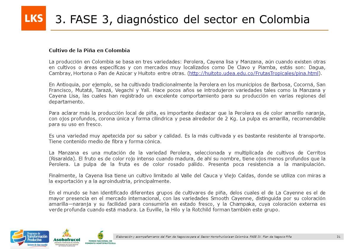 31 Elaboración y acompañamiento del Plan de Negocios para el Sector Hortofrutícola en Colombia. FASE IV. Plan de Negocio Piña 3. FASE 3, diagnóstico d