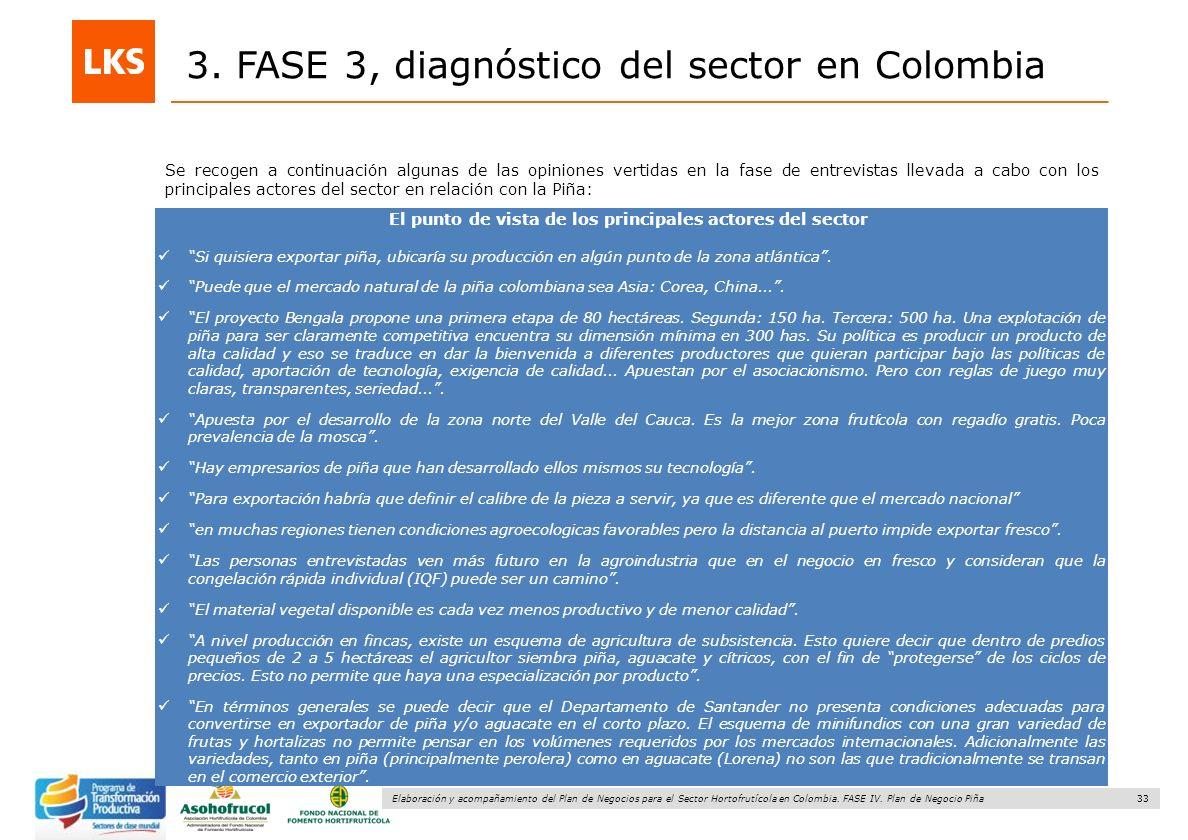 33 Elaboración y acompañamiento del Plan de Negocios para el Sector Hortofrutícola en Colombia. FASE IV. Plan de Negocio Piña 3. FASE 3, diagnóstico d