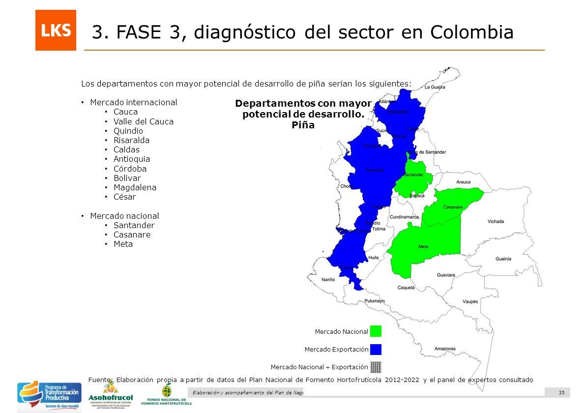 35 Elaboración y acompañamiento del Plan de Negocios para el Sector Hortofrutícola en Colombia. FASE IV. Plan de Negocio Piña 3. FASE 3, diagnóstico d