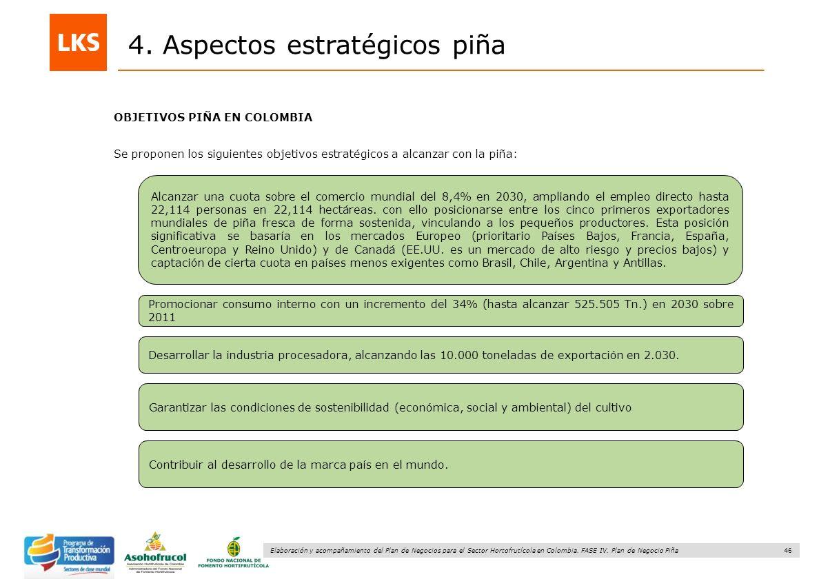 46 Elaboración y acompañamiento del Plan de Negocios para el Sector Hortofrutícola en Colombia. FASE IV. Plan de Negocio Piña 4. Aspectos estratégicos