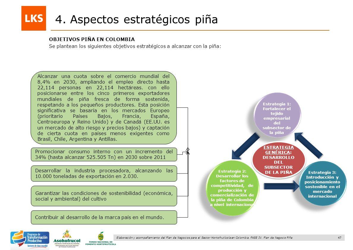 47 Elaboración y acompañamiento del Plan de Negocios para el Sector Hortofrutícola en Colombia. FASE IV. Plan de Negocio Piña 4. Aspectos estratégicos
