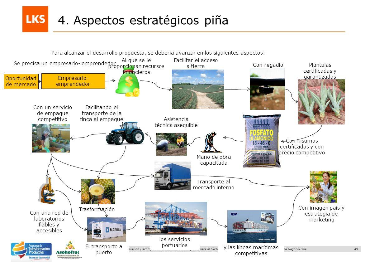 49 Elaboración y acompañamiento del Plan de Negocios para el Sector Hortofrutícola en Colombia. FASE IV. Plan de Negocio Piña 4. Aspectos estratégicos
