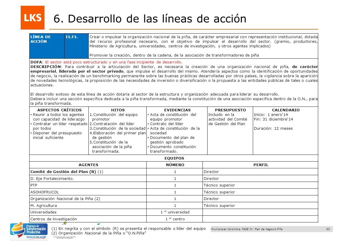 63 Elaboración y acompañamiento del Plan de Negocios para el Sector Hortofrutícola en Colombia. FASE IV. Plan de Negocio Piña 6. Desarrollo de las lín
