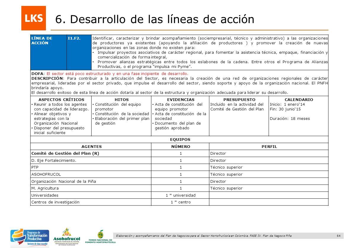 64 Elaboración y acompañamiento del Plan de Negocios para el Sector Hortofrutícola en Colombia. FASE IV. Plan de Negocio Piña 6. Desarrollo de las lín