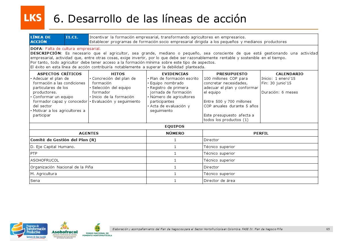 65 Elaboración y acompañamiento del Plan de Negocios para el Sector Hortofrutícola en Colombia. FASE IV. Plan de Negocio Piña 6. Desarrollo de las lín