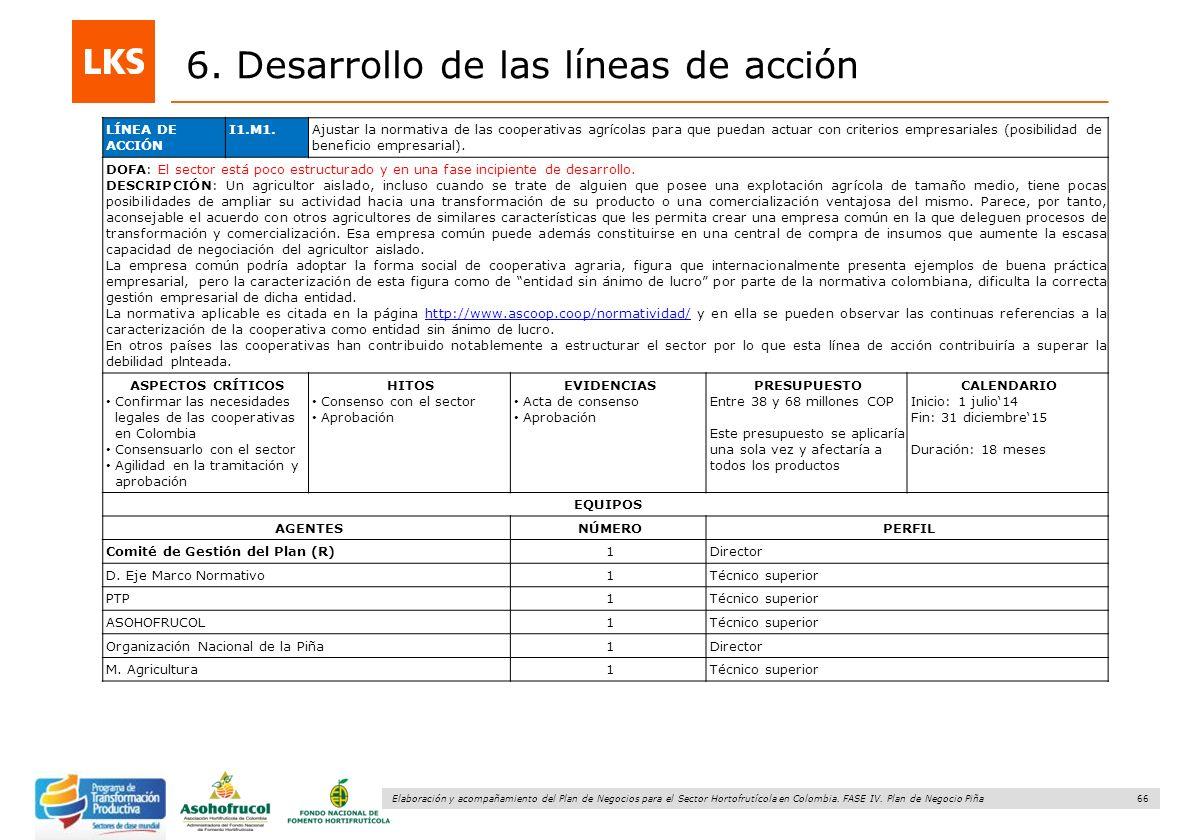 66 Elaboración y acompañamiento del Plan de Negocios para el Sector Hortofrutícola en Colombia. FASE IV. Plan de Negocio Piña 6. Desarrollo de las lín