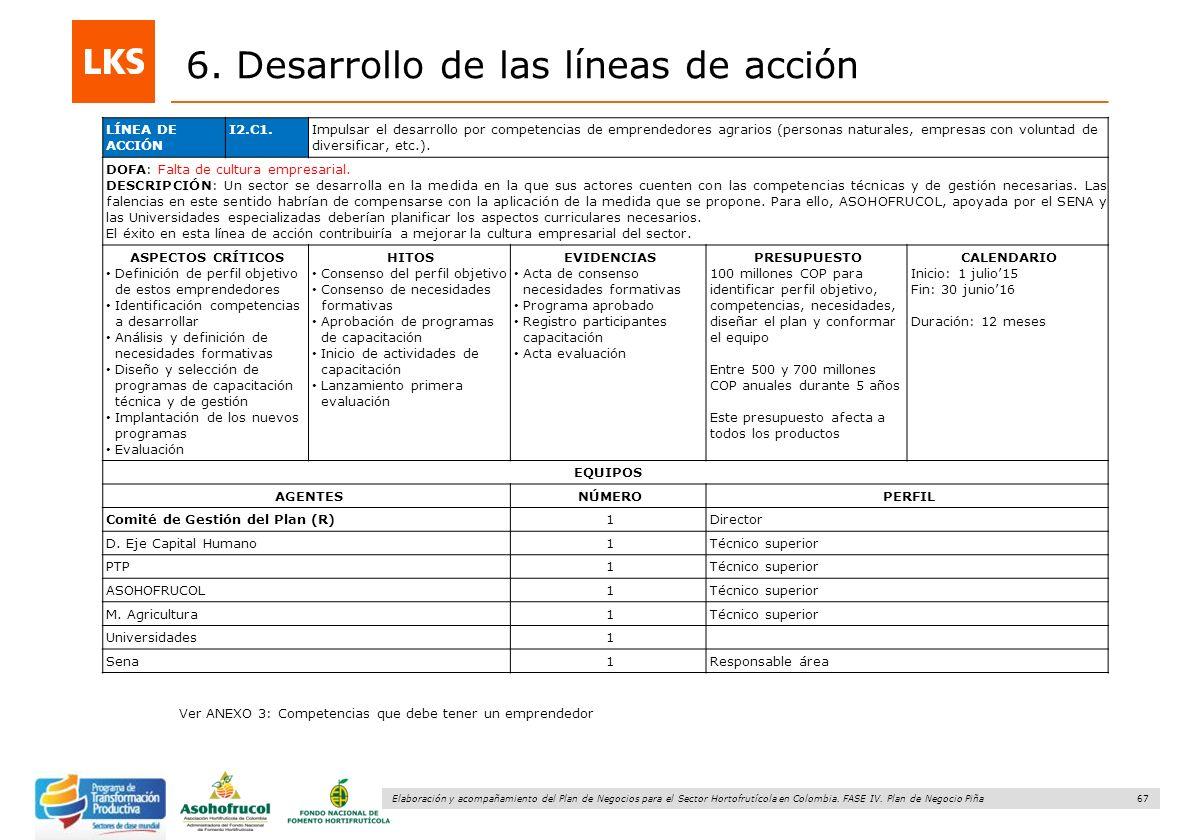 67 Elaboración y acompañamiento del Plan de Negocios para el Sector Hortofrutícola en Colombia. FASE IV. Plan de Negocio Piña 6. Desarrollo de las lín