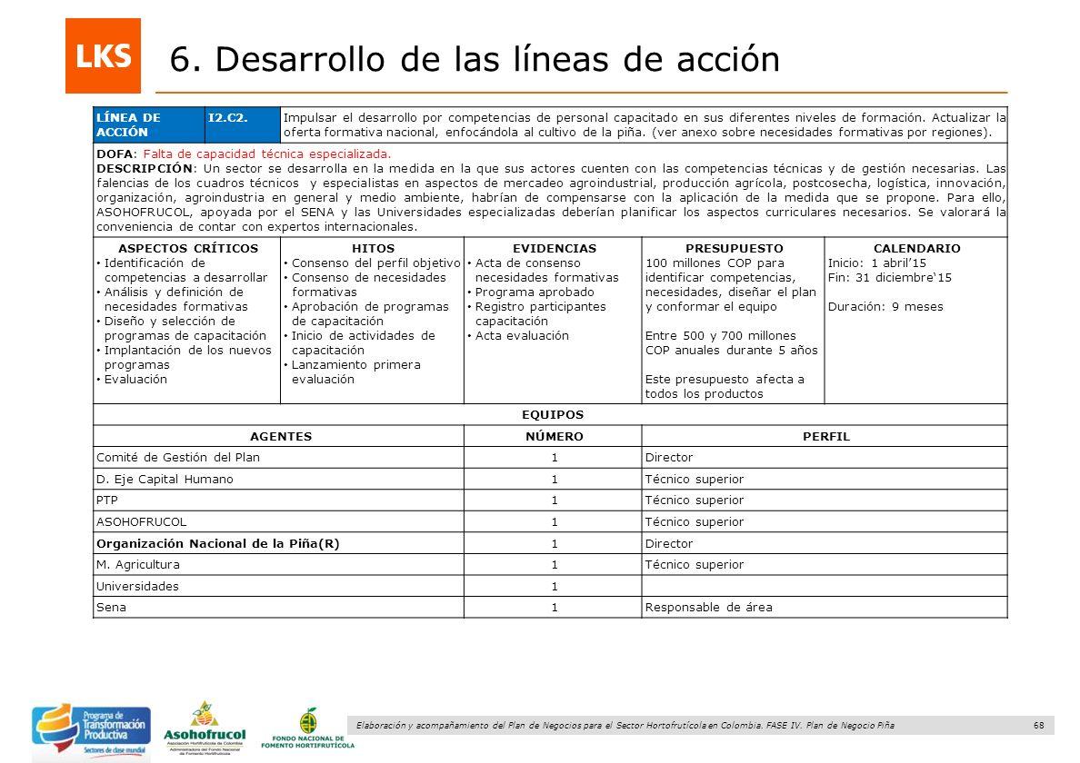 68 Elaboración y acompañamiento del Plan de Negocios para el Sector Hortofrutícola en Colombia. FASE IV. Plan de Negocio Piña 6. Desarrollo de las lín