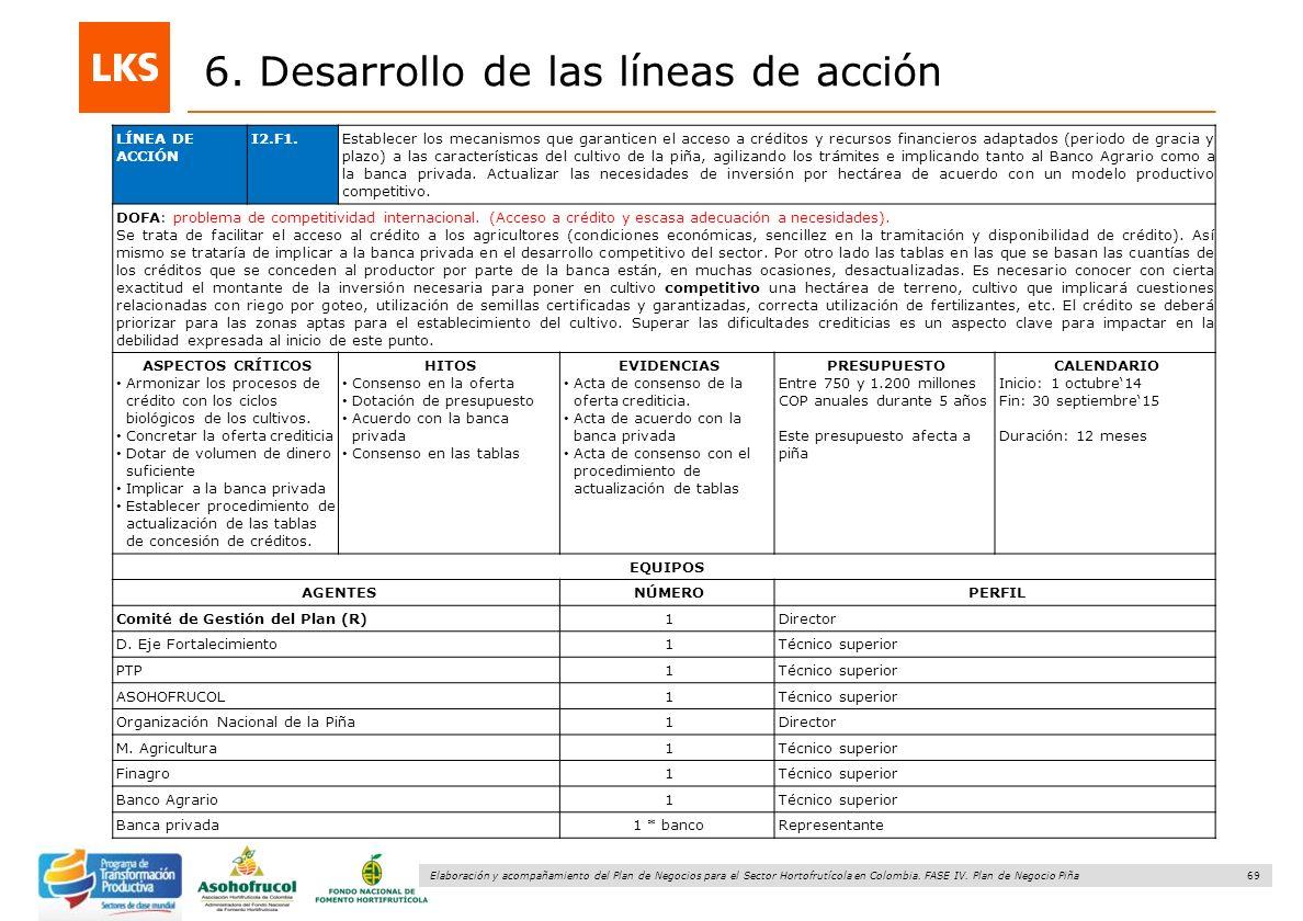 69 Elaboración y acompañamiento del Plan de Negocios para el Sector Hortofrutícola en Colombia. FASE IV. Plan de Negocio Piña 6. Desarrollo de las lín