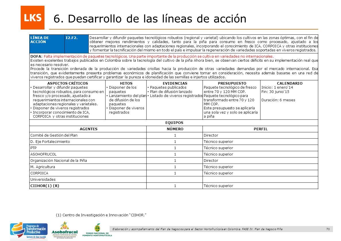 70 Elaboración y acompañamiento del Plan de Negocios para el Sector Hortofrutícola en Colombia. FASE IV. Plan de Negocio Piña 6. Desarrollo de las lín