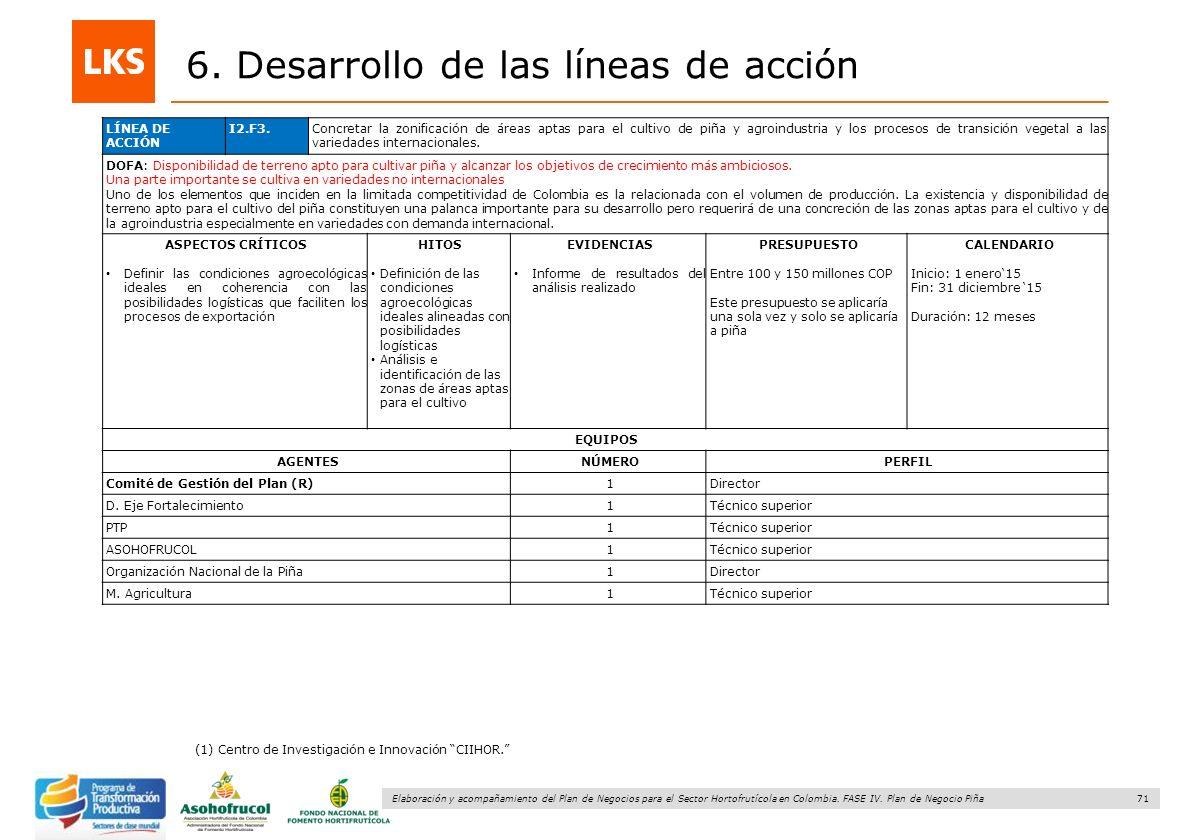 71 Elaboración y acompañamiento del Plan de Negocios para el Sector Hortofrutícola en Colombia. FASE IV. Plan de Negocio Piña 6. Desarrollo de las lín