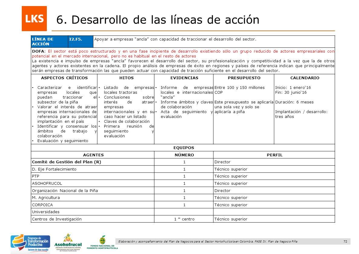 72 Elaboración y acompañamiento del Plan de Negocios para el Sector Hortofrutícola en Colombia. FASE IV. Plan de Negocio Piña 6. Desarrollo de las lín