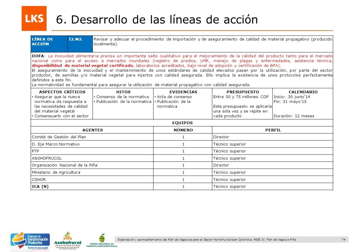 74 Elaboración y acompañamiento del Plan de Negocios para el Sector Hortofrutícola en Colombia. FASE IV. Plan de Negocio Piña 6. Desarrollo de las lín