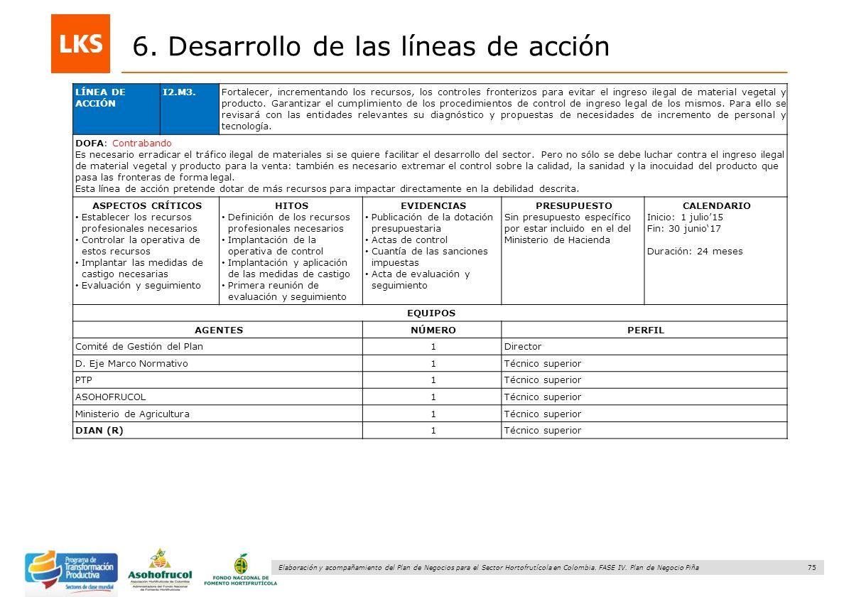 75 Elaboración y acompañamiento del Plan de Negocios para el Sector Hortofrutícola en Colombia. FASE IV. Plan de Negocio Piña 6. Desarrollo de las lín