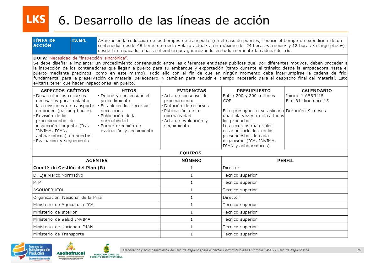 76 Elaboración y acompañamiento del Plan de Negocios para el Sector Hortofrutícola en Colombia. FASE IV. Plan de Negocio Piña 6. Desarrollo de las lín