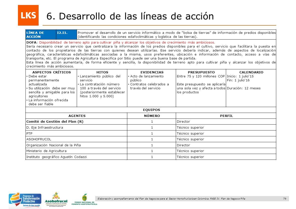 79 Elaboración y acompañamiento del Plan de Negocios para el Sector Hortofrutícola en Colombia. FASE IV. Plan de Negocio Piña 6. Desarrollo de las lín
