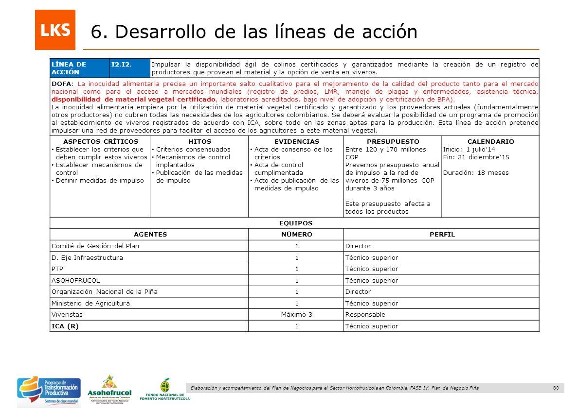 80 Elaboración y acompañamiento del Plan de Negocios para el Sector Hortofrutícola en Colombia. FASE IV. Plan de Negocio Piña 6. Desarrollo de las lín