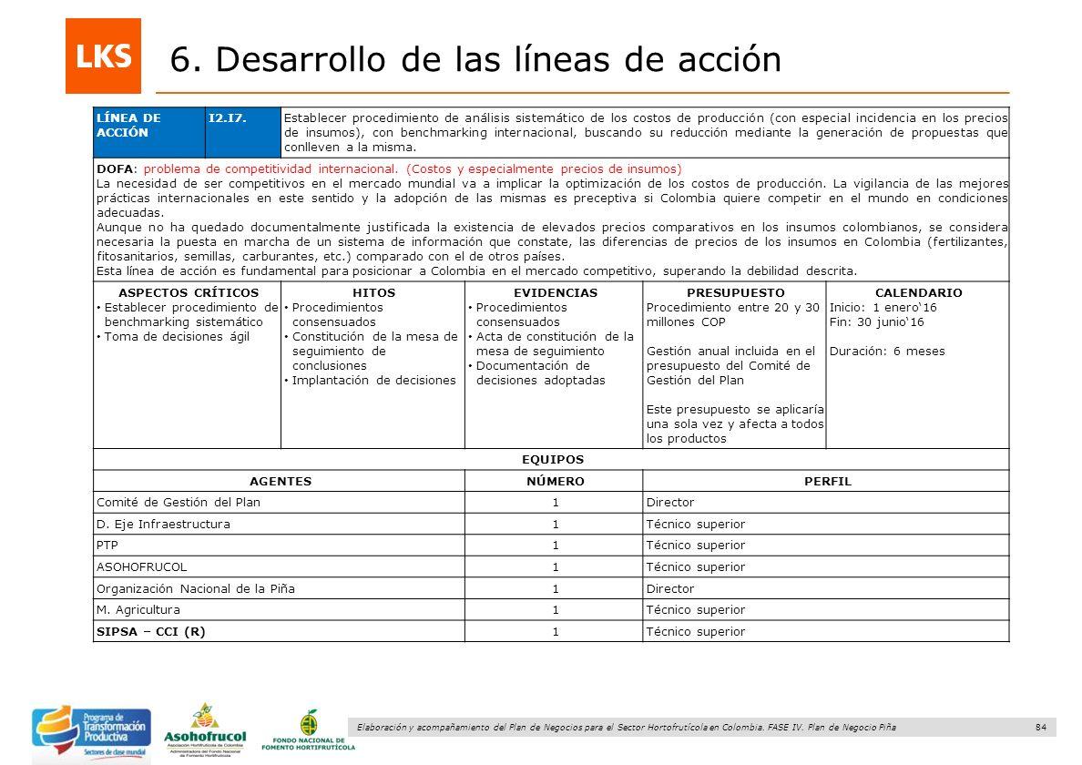 84 Elaboración y acompañamiento del Plan de Negocios para el Sector Hortofrutícola en Colombia. FASE IV. Plan de Negocio Piña 6. Desarrollo de las lín