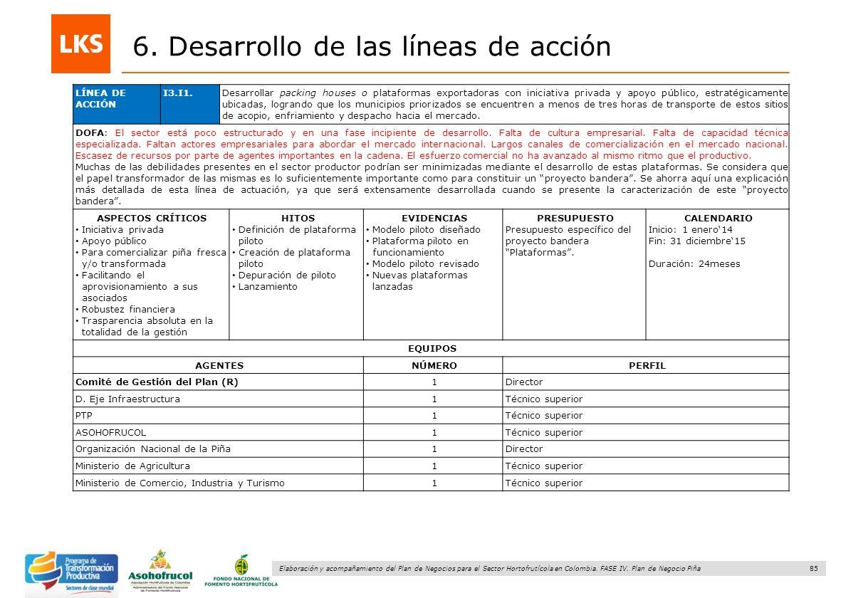 85 Elaboración y acompañamiento del Plan de Negocios para el Sector Hortofrutícola en Colombia. FASE IV. Plan de Negocio Piña 6. Desarrollo de las lín