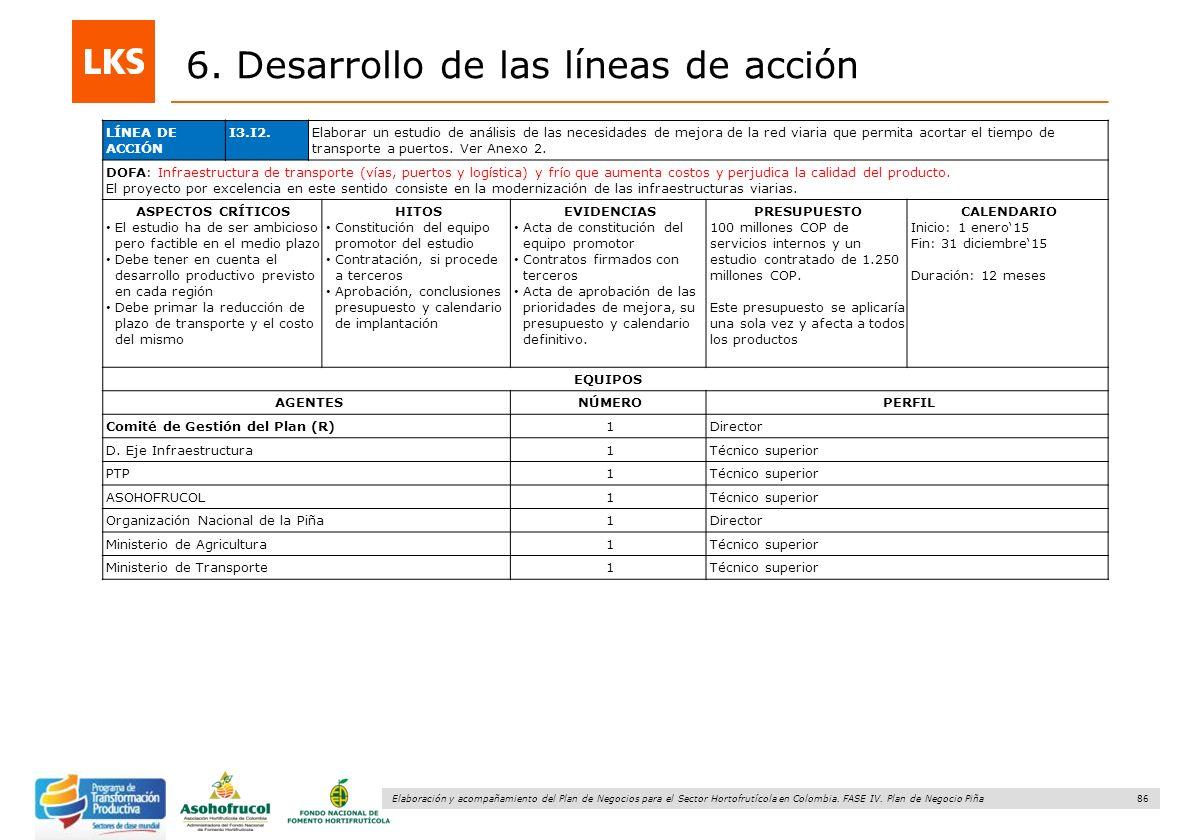 86 Elaboración y acompañamiento del Plan de Negocios para el Sector Hortofrutícola en Colombia. FASE IV. Plan de Negocio Piña 6. Desarrollo de las lín