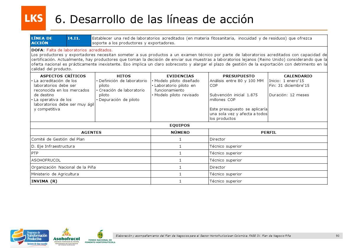 90 Elaboración y acompañamiento del Plan de Negocios para el Sector Hortofrutícola en Colombia. FASE IV. Plan de Negocio Piña 6. Desarrollo de las lín