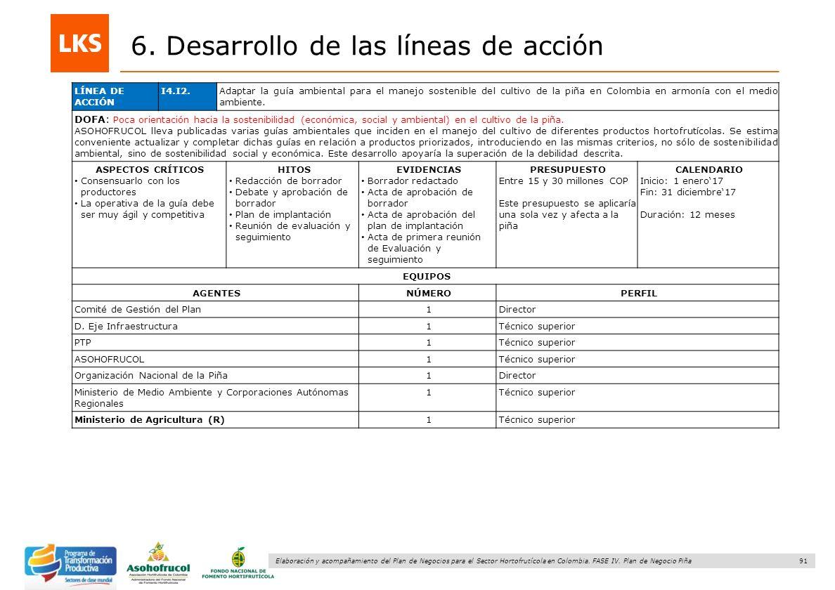 91 Elaboración y acompañamiento del Plan de Negocios para el Sector Hortofrutícola en Colombia. FASE IV. Plan de Negocio Piña 6. Desarrollo de las lín