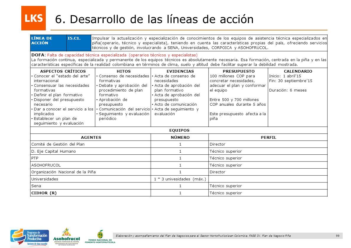 99 Elaboración y acompañamiento del Plan de Negocios para el Sector Hortofrutícola en Colombia. FASE IV. Plan de Negocio Piña 6. Desarrollo de las lín